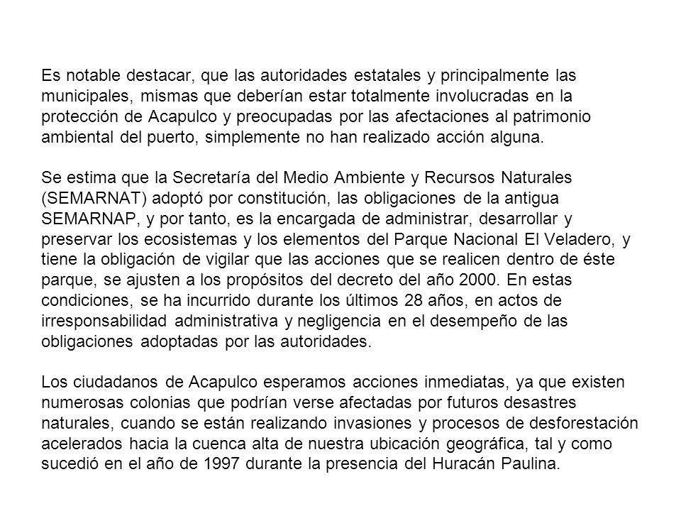 Es notable destacar, que las autoridades estatales y principalmente las municipales, mismas que deberían estar totalmente involucradas en la protección de Acapulco y preocupadas por las afectaciones al patrimonio ambiental del puerto, simplemente no han realizado acción alguna.