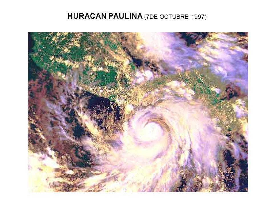 HURACAN PAULINA (7DE OCTUBRE 1997)