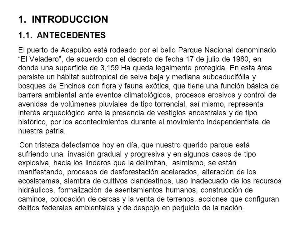1. INTRODUCCION 1.1.