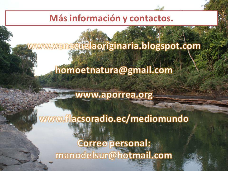 Más información y contactos.