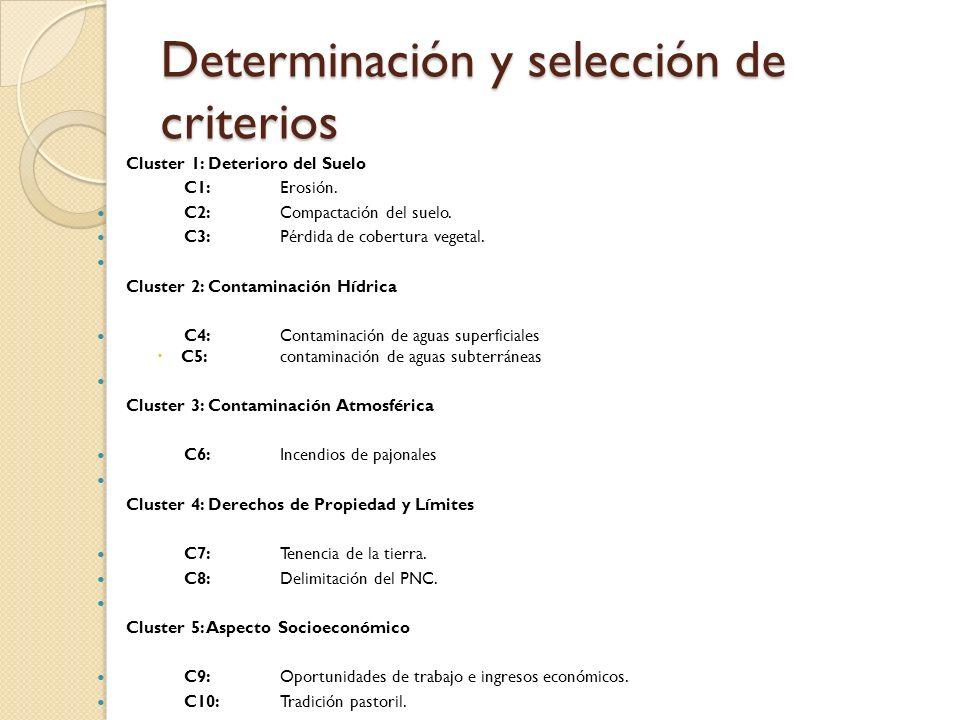 Determinación y selección de criterios