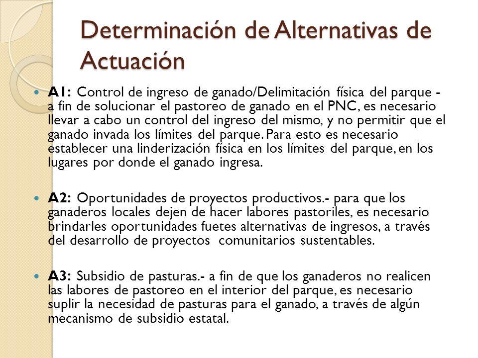 Determinación de Alternativas de Actuación