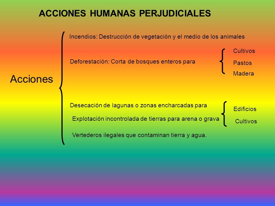 Acciones ACCIONES HUMANAS PERJUDICIALES