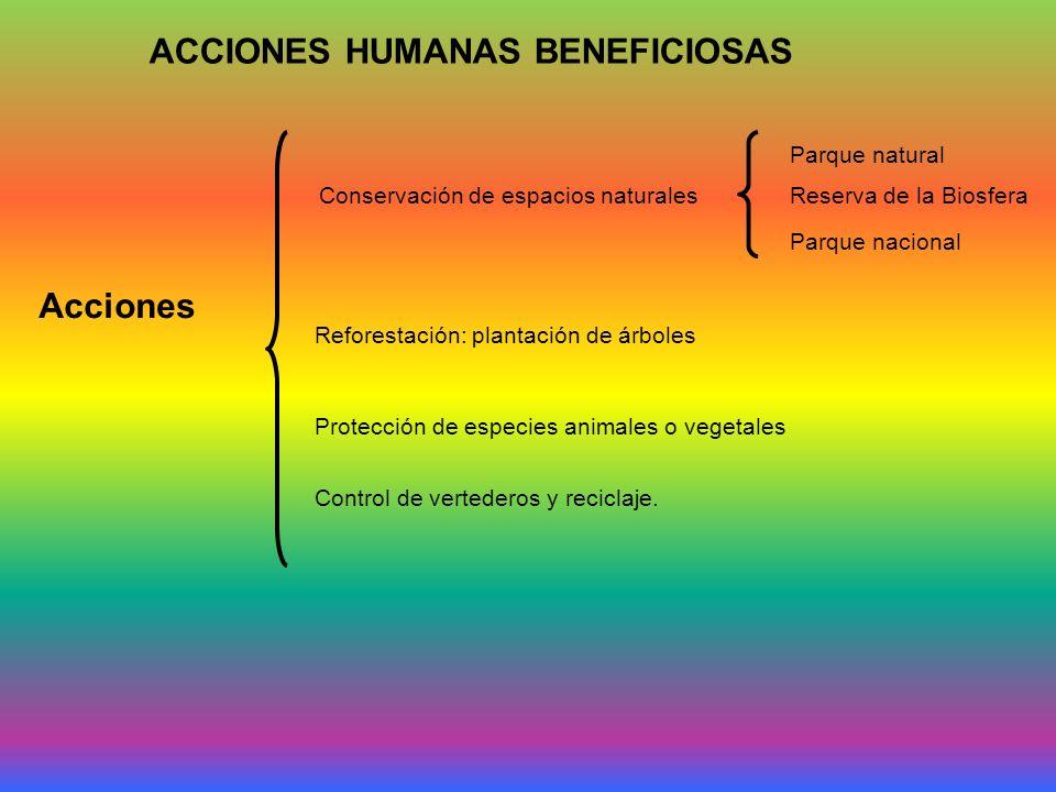 ACCIONES HUMANAS BENEFICIOSAS