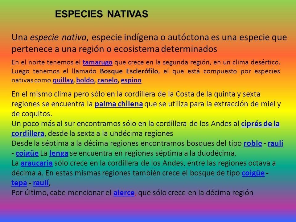 ESPECIES NATIVAS Una especie nativa, especie indígena o autóctona es una especie que pertenece a una región o ecosistema determinados.