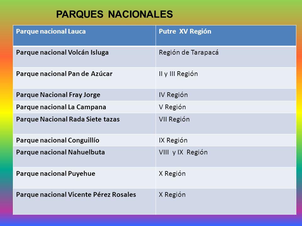 PARQUES NACIONALES Parque nacional Lauca Putre XV Región
