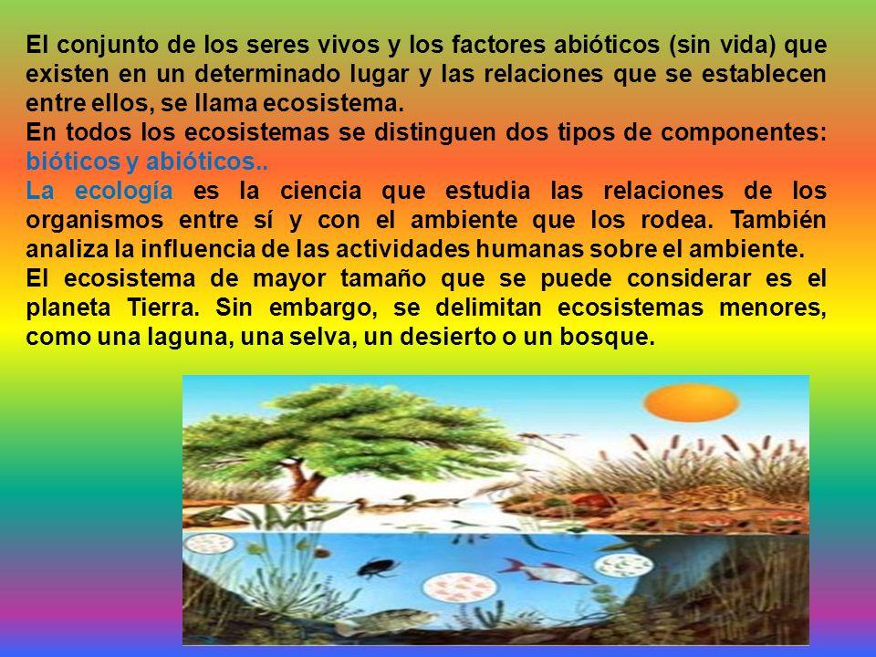 El conjunto de los seres vivos y los factores abióticos (sin vida) que existen en un determinado lugar y las relaciones que se establecen entre ellos, se llama ecosistema.