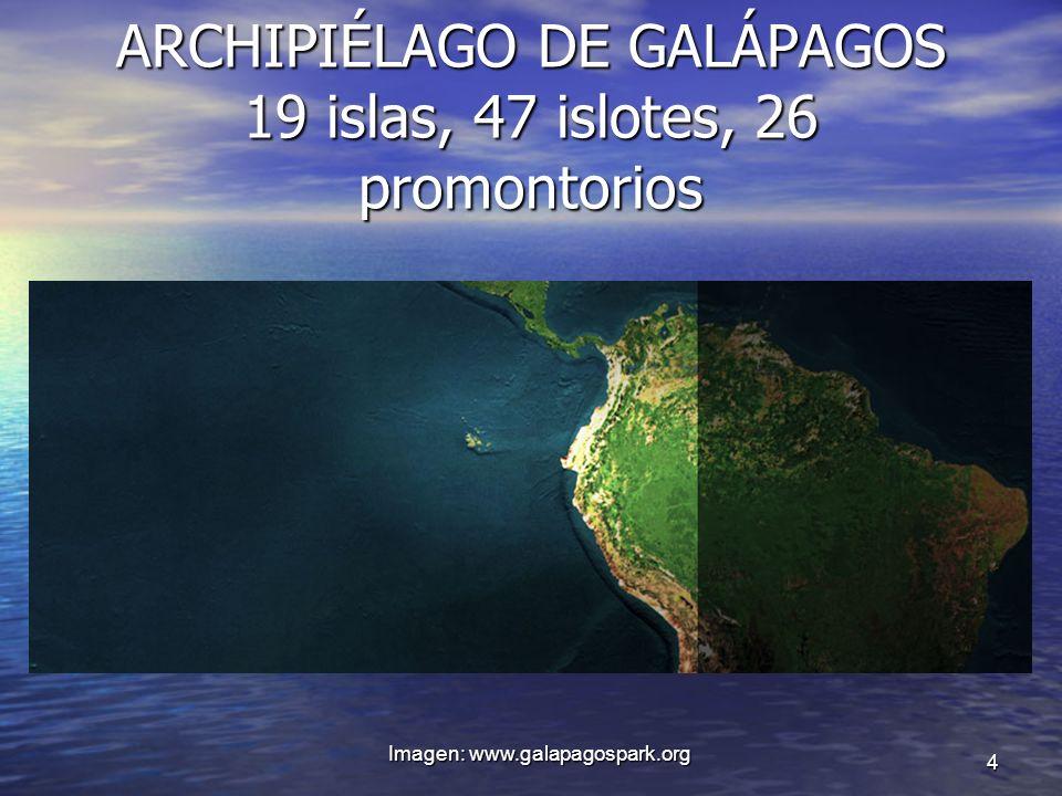 ARCHIPIÉLAGO DE GALÁPAGOS 19 islas, 47 islotes, 26 promontorios