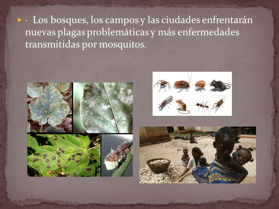 · Los bosques, los campos y las ciudades enfrentarán nuevas plagas problemáticas y más enfermedades transmitidas por mosquitos.