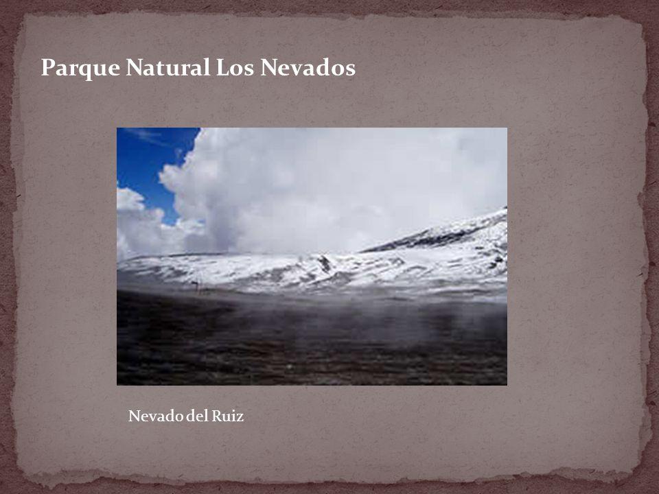 Parque Natural Los Nevados