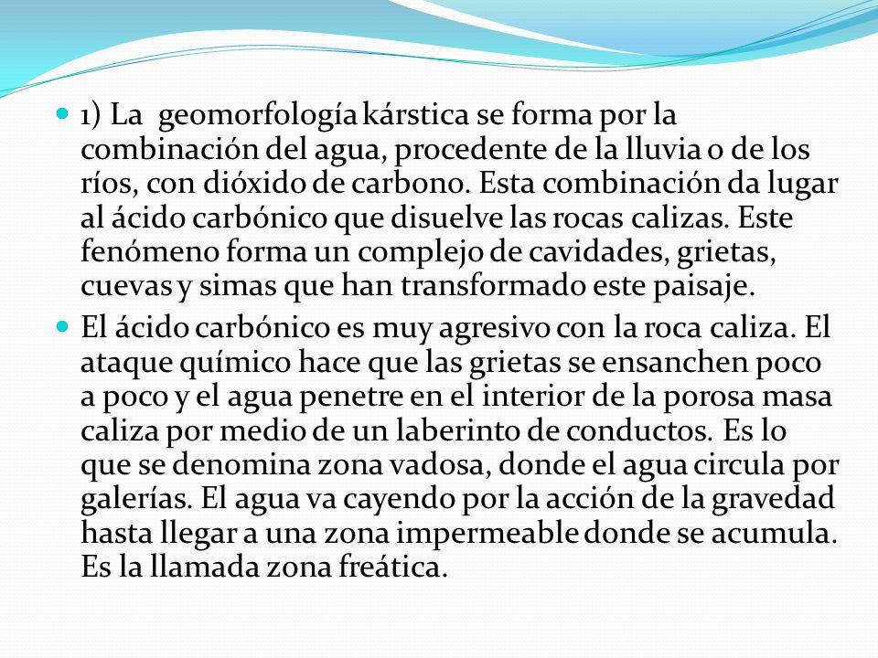 1) La geomorfología kárstica se forma por la combinación del agua, procedente de la lluvia o de los ríos, con dióxido de carbono. Esta combinación da lugar al ácido carbónico que disuelve las rocas calizas. Este fenómeno forma un complejo de cavidades, grietas, cuevas y simas que han transformado este paisaje.