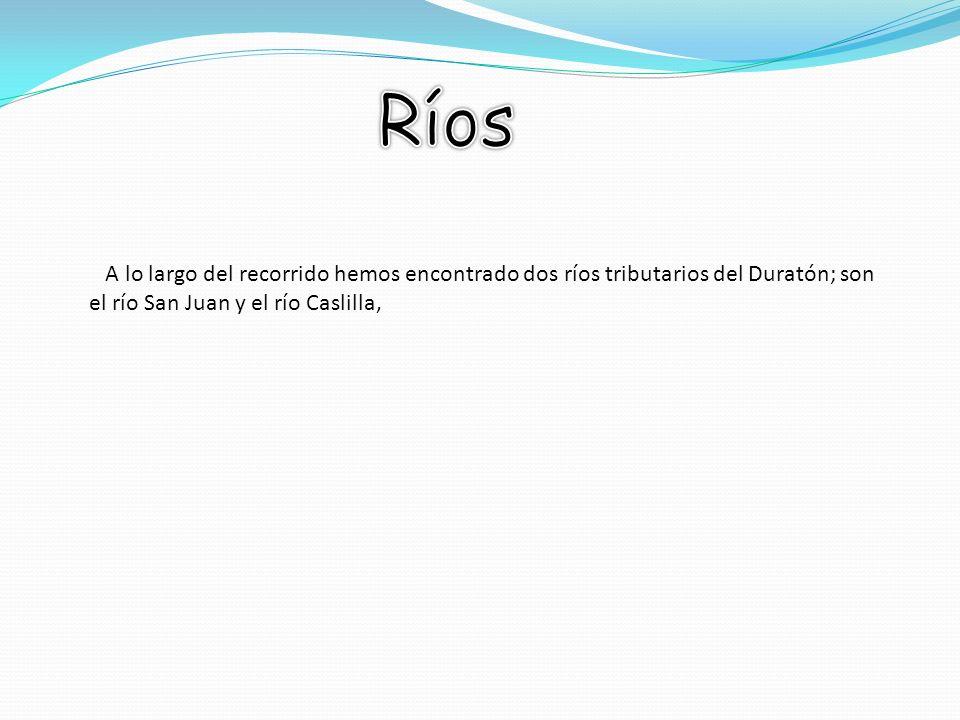 Ríos A lo largo del recorrido hemos encontrado dos ríos tributarios del Duratón; son el río San Juan y el río Caslilla,