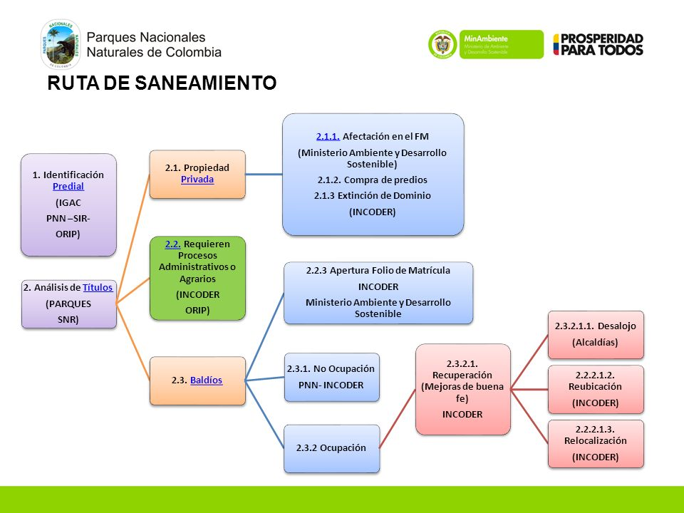 RUTA DE SANEAMIENTO 1. Identificación Predial (IGAC PNN –SIR- ORIP)