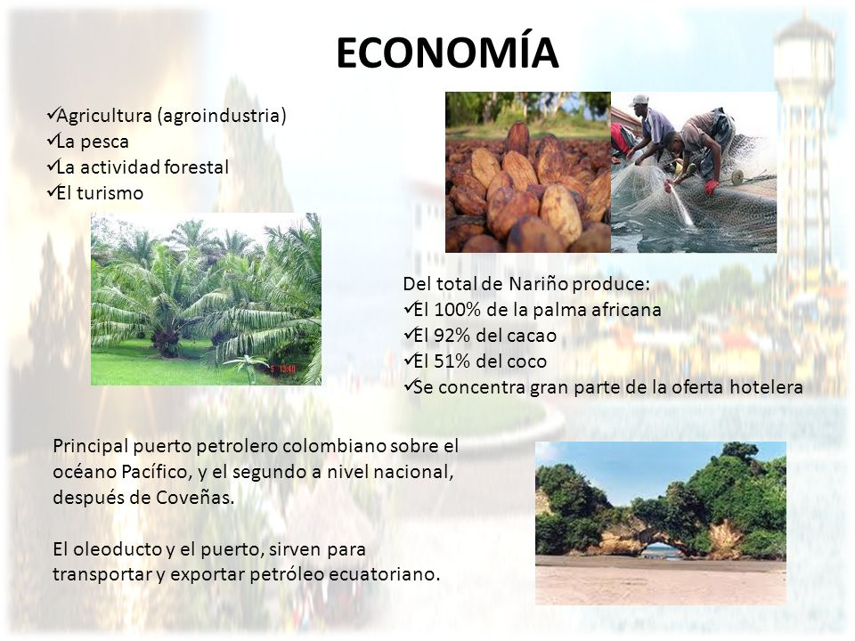 ECONOMÍA Agricultura (agroindustria) La pesca La actividad forestal