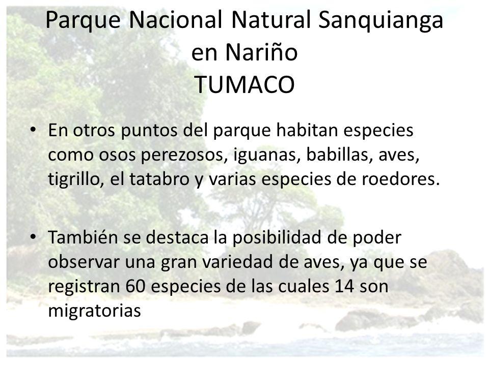 Parque Nacional Natural Sanquianga en Nariño TUMACO
