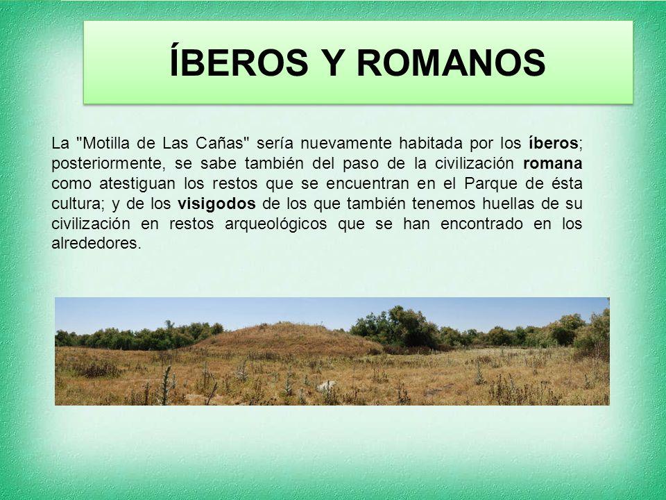 ÍBEROS Y ROMANOS