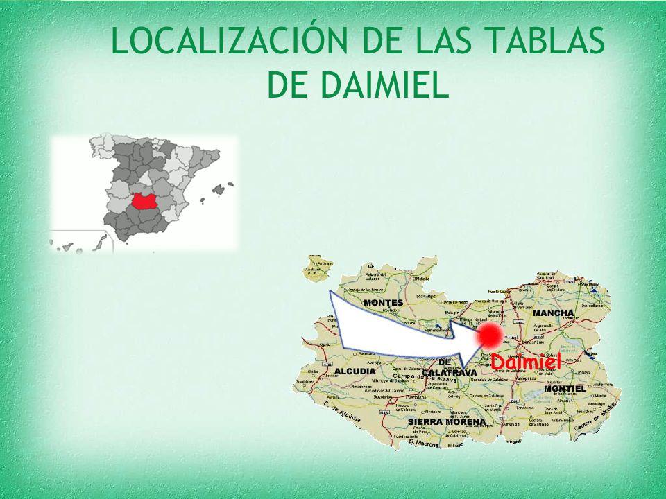LOCALIZACIÓN DE LAS TABLAS DE DAIMIEL