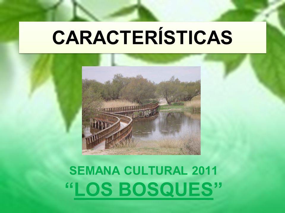 SEMANA CULTURAL 2011 LOS BOSQUES