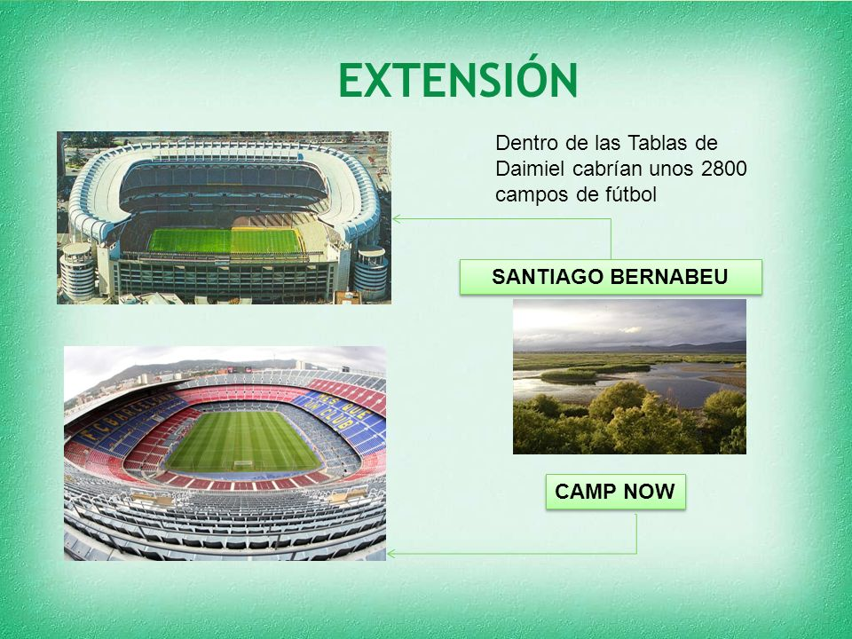 EXTENSIÓN Dentro de las Tablas de Daimiel cabrían unos 2800 campos de fútbol.