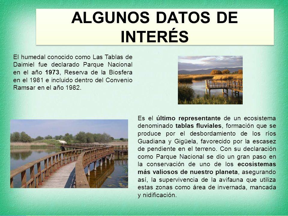 ALGUNOS DATOS DE INTERÉS