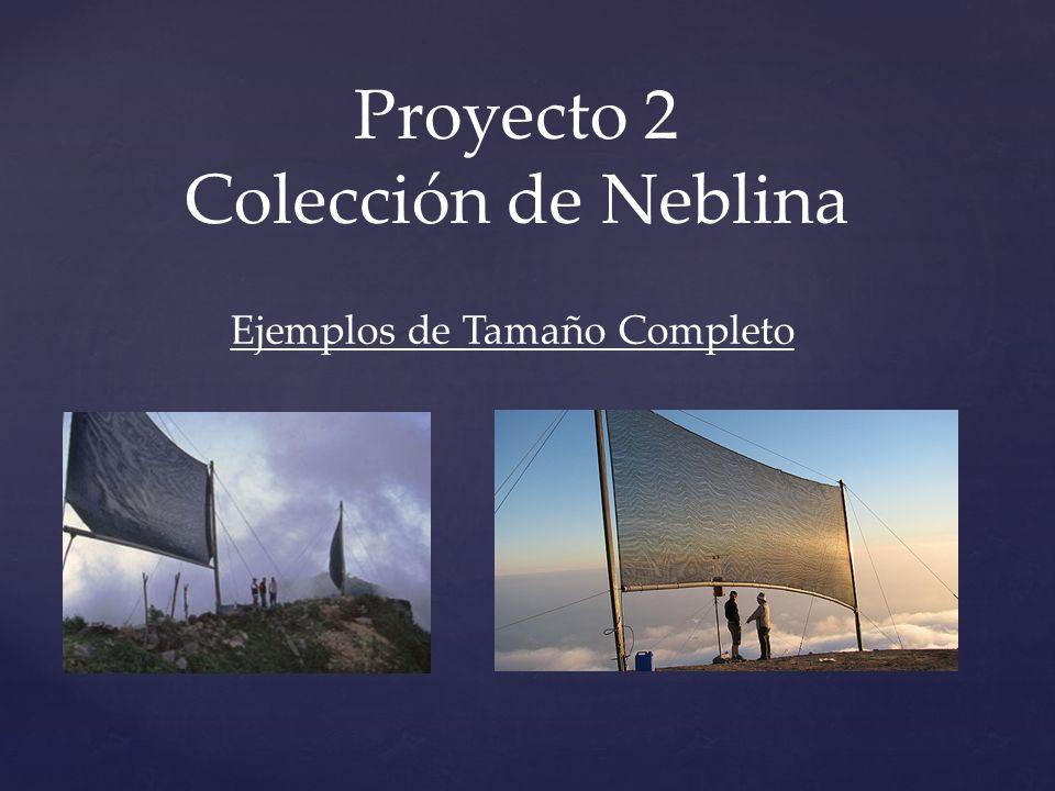 Proyecto 2 Colección de Neblina Ejemplos de Tamaño Completo