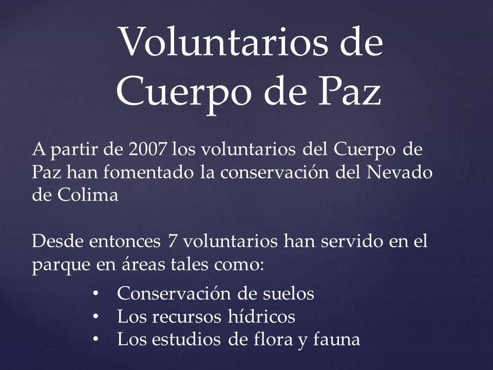 Voluntarios de Cuerpo de Paz