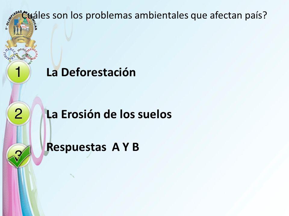 Cuáles son los problemas ambientales que afectan país