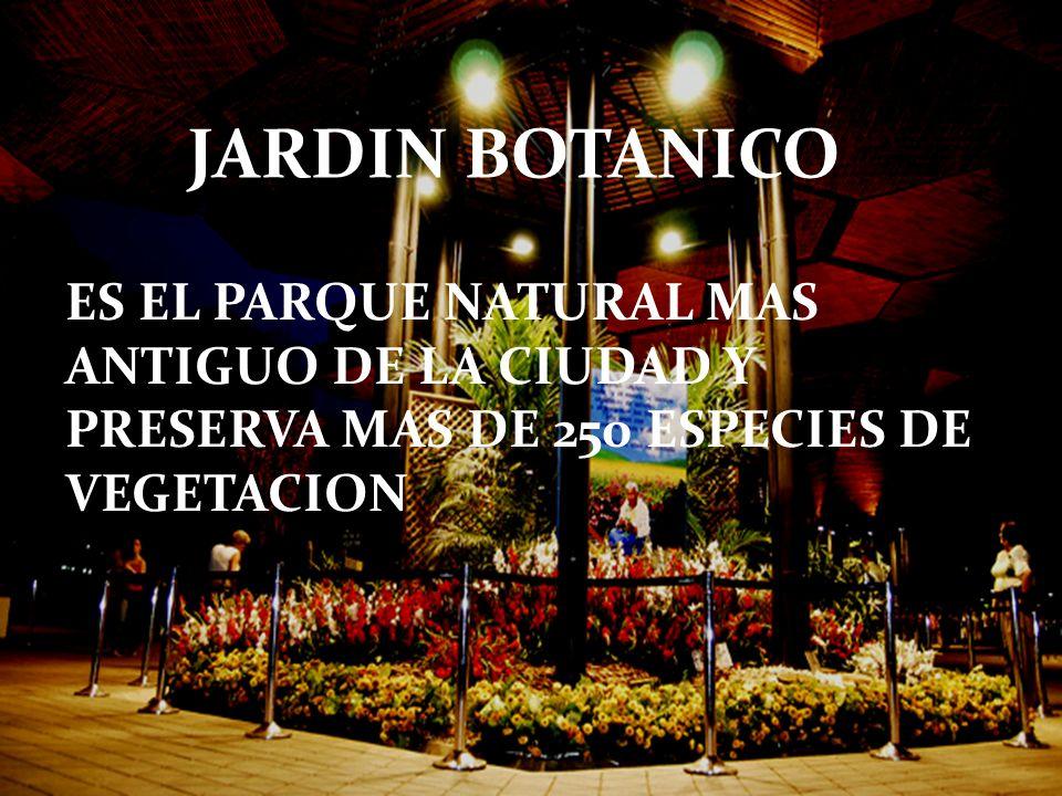 JARDIN BOTANICO ES EL PARQUE NATURAL MAS ANTIGUO DE LA CIUDAD Y PRESERVA MAS DE 250 ESPECIES DE VEGETACION.