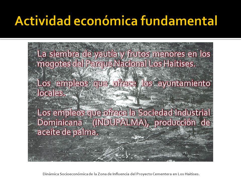 Actividad económica fundamental