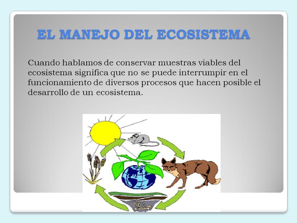 EL MANEJO DEL ECOSISTEMA