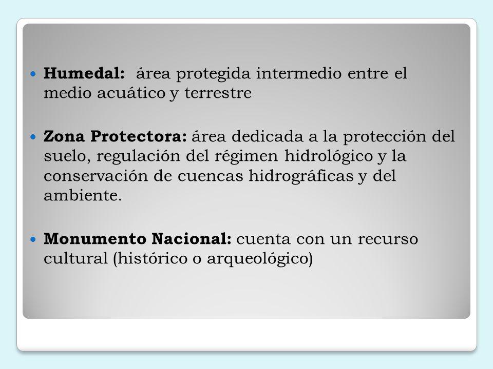 Humedal: área protegida intermedio entre el medio acuático y terrestre