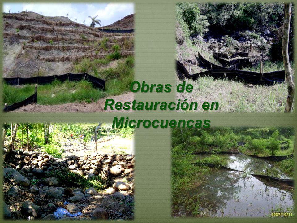 Obras de Restauración en Microcuencas