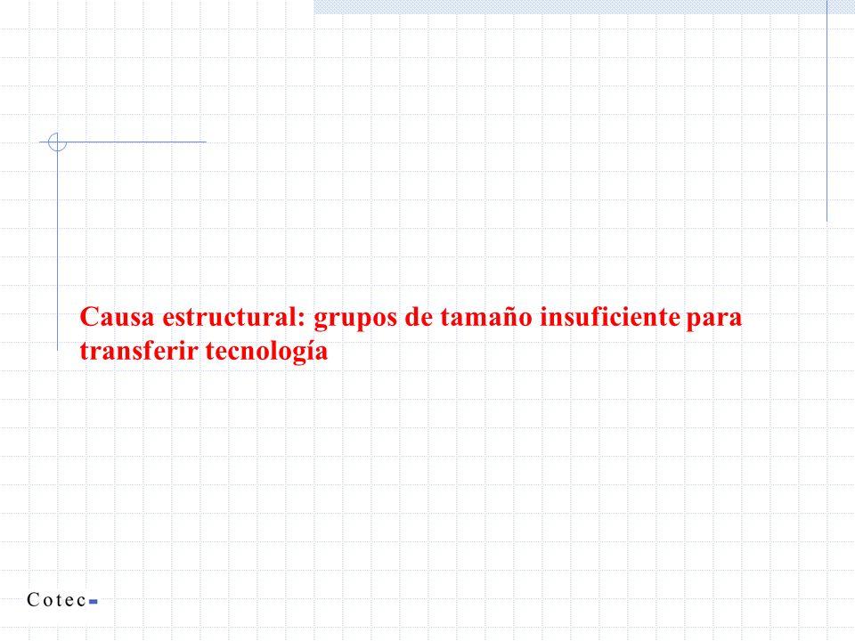 Causa estructural: grupos de tamaño insuficiente para transferir tecnología