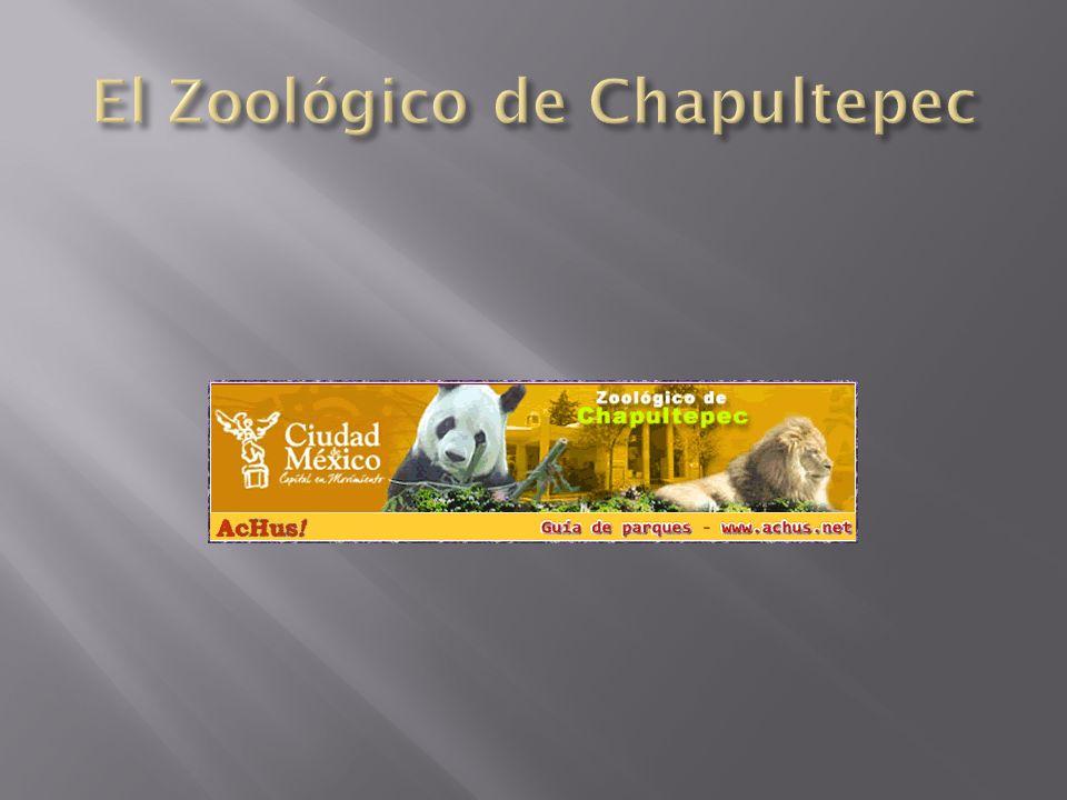 El Zoológico de Chapultepec