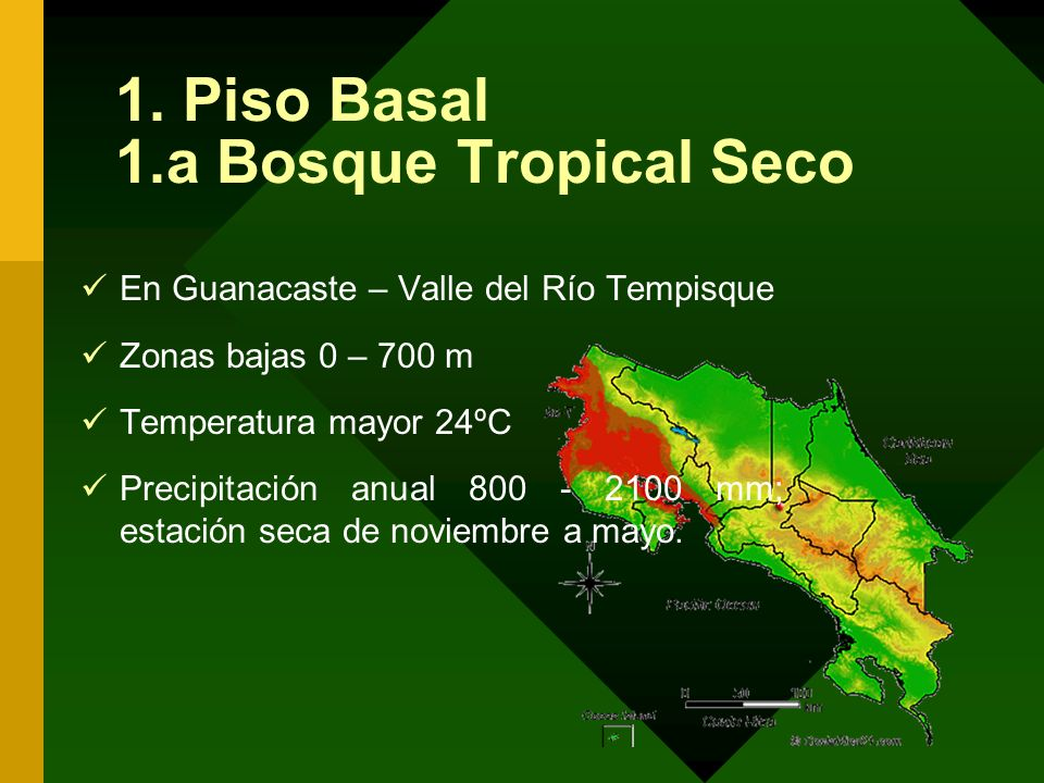 1. Piso Basal 1.a Bosque Tropical Seco
