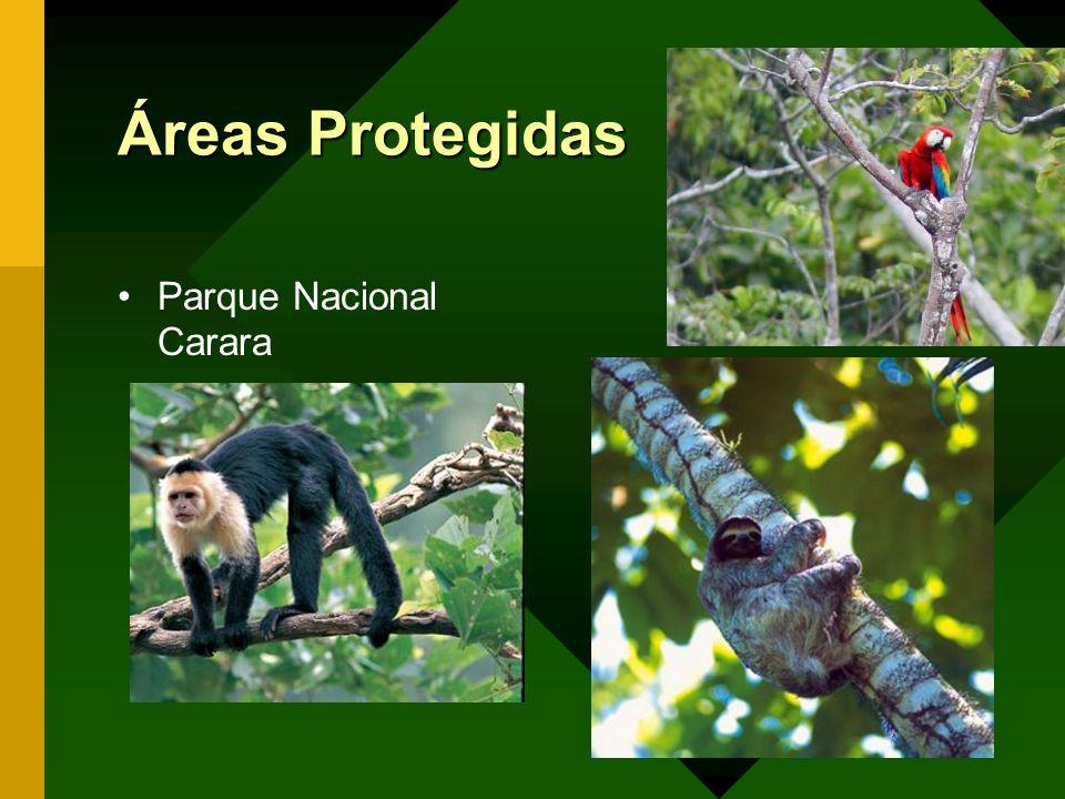 Áreas Protegidas Parque Nacional Carara