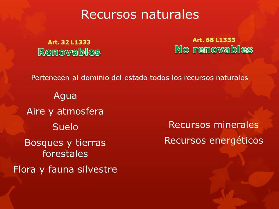 Pertenecen al dominio del estado todos los recursos naturales