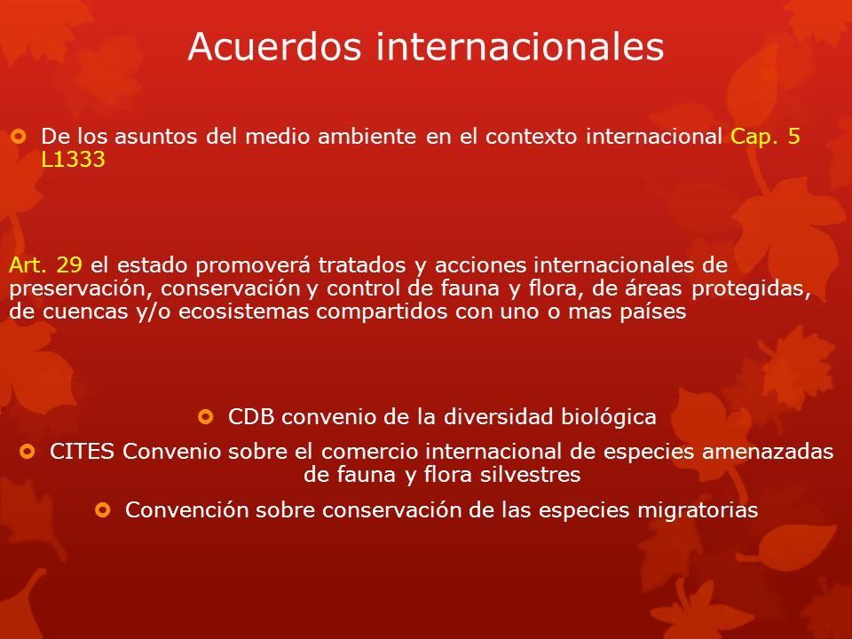 Acuerdos internacionales