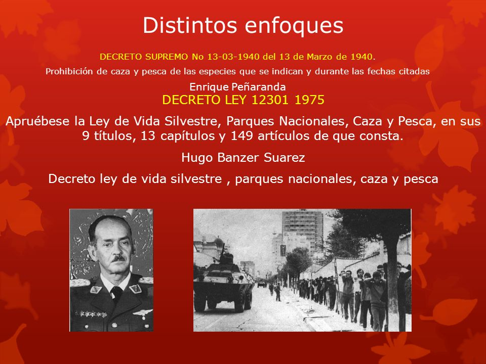 Distintos enfoques DECRETO LEY 12301 1975