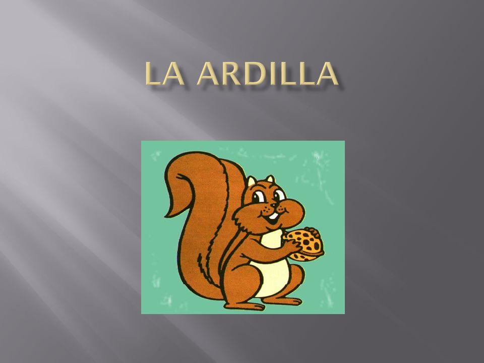 La Ardilla