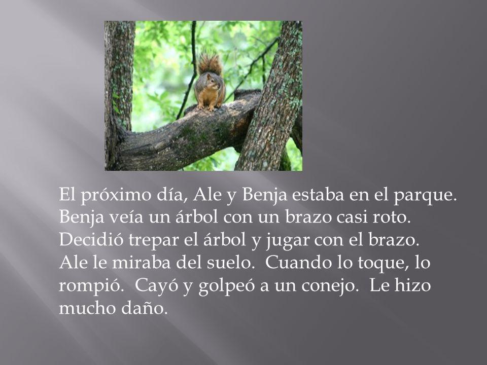 El próximo día, Ale y Benja estaba en el parque