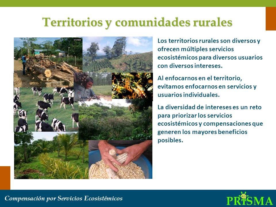 Territorios y comunidades rurales
