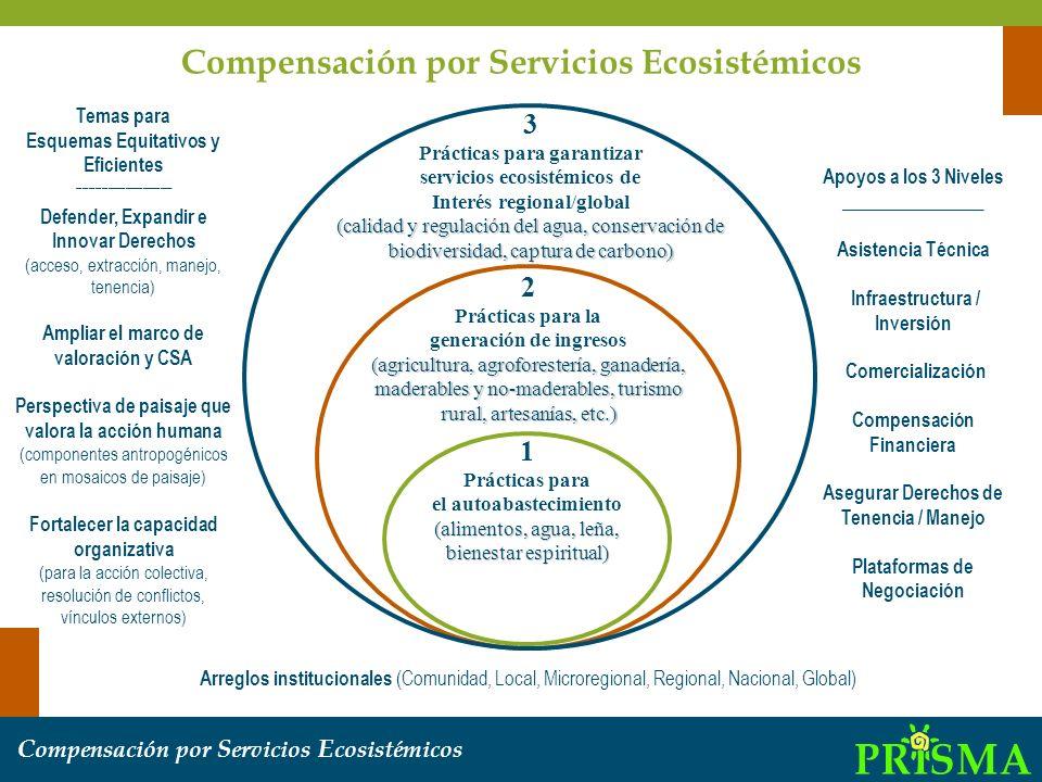 Compensación por Servicios Ecosistémicos