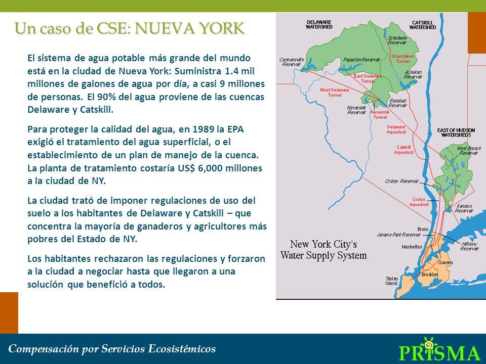 Un caso de CSE: NUEVA YORK