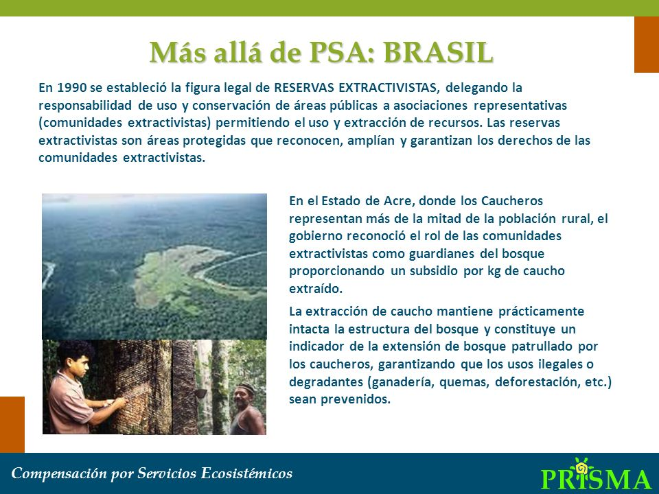 Más allá de PSA: BRASIL