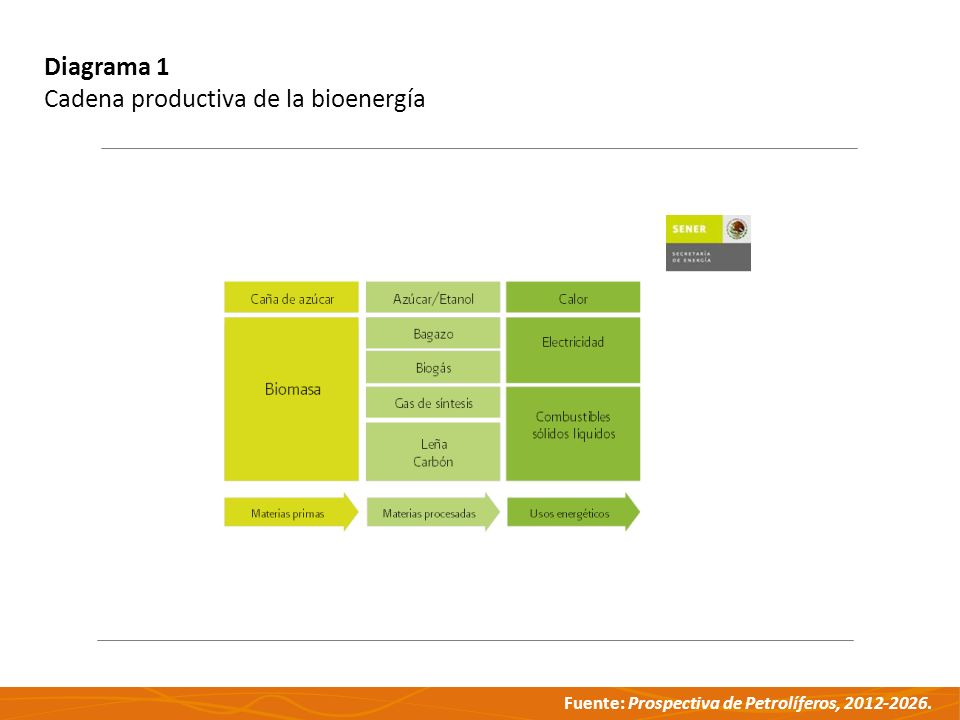 Diagrama 1 Cadena productiva de la bioenergía