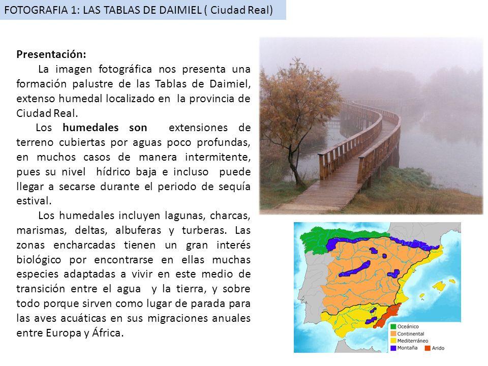 FOTOGRAFIA 1: LAS TABLAS DE DAIMIEL ( Ciudad Real)