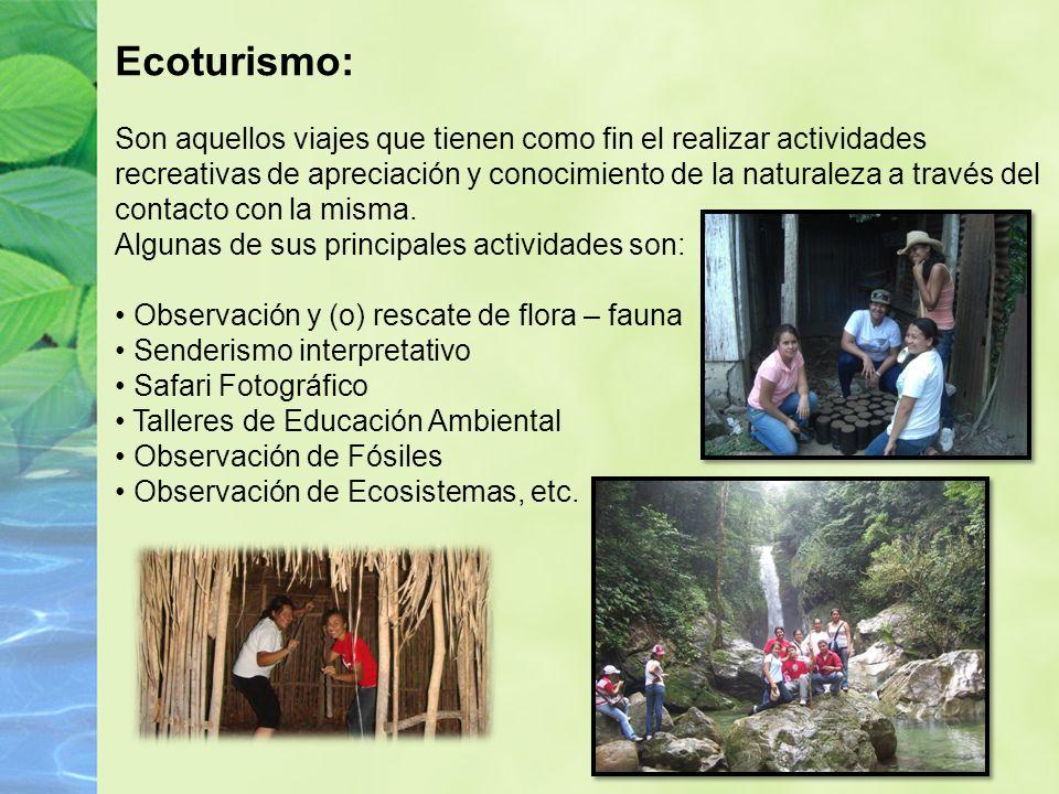 Ecoturismo: