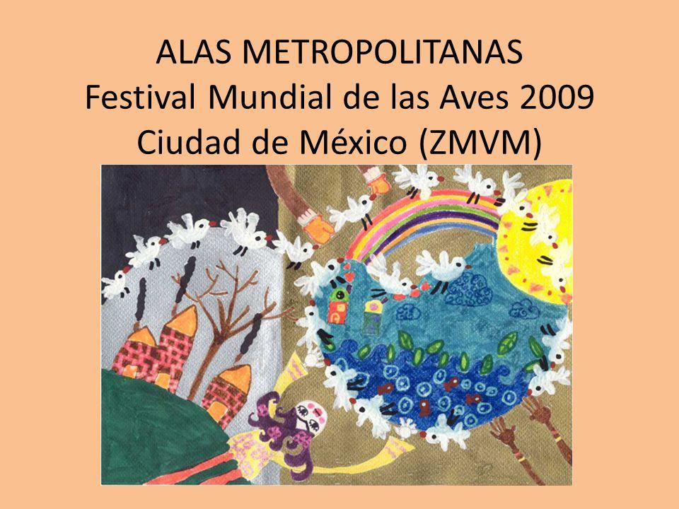 ALAS METROPOLITANAS Festival Mundial de las Aves 2009 Ciudad de México (ZMVM)