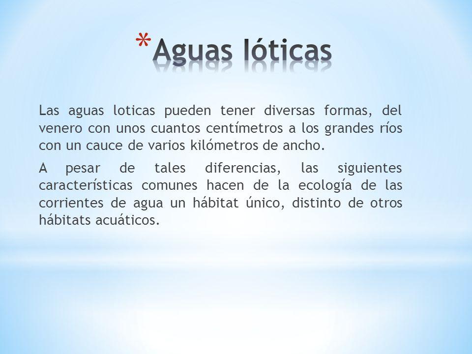 Aguas Ióticas